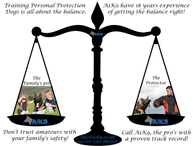 A1K9s Balance Scale