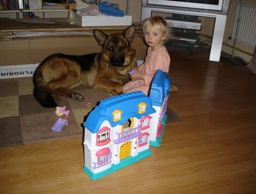 A1K9 Protection Dog With Small Child