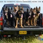 A1K9-F150-with-Fur-Immobilisers-7007