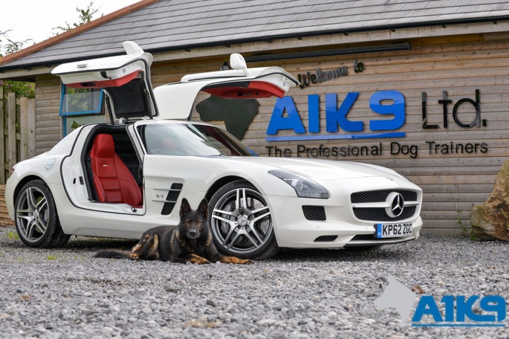 A1K9-family-protection-dog-wagary-sls63-amg-5805