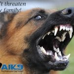 Dont-threaten-my-family-with-Logo-5379