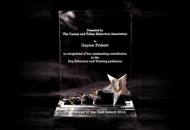 CFBA Practitioner of the year