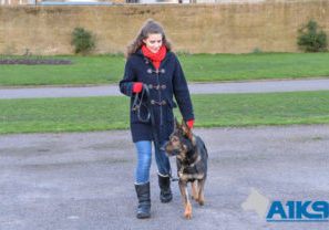 A1K9 family protection handover Q9